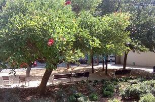 Gardens of Mestre Balcells